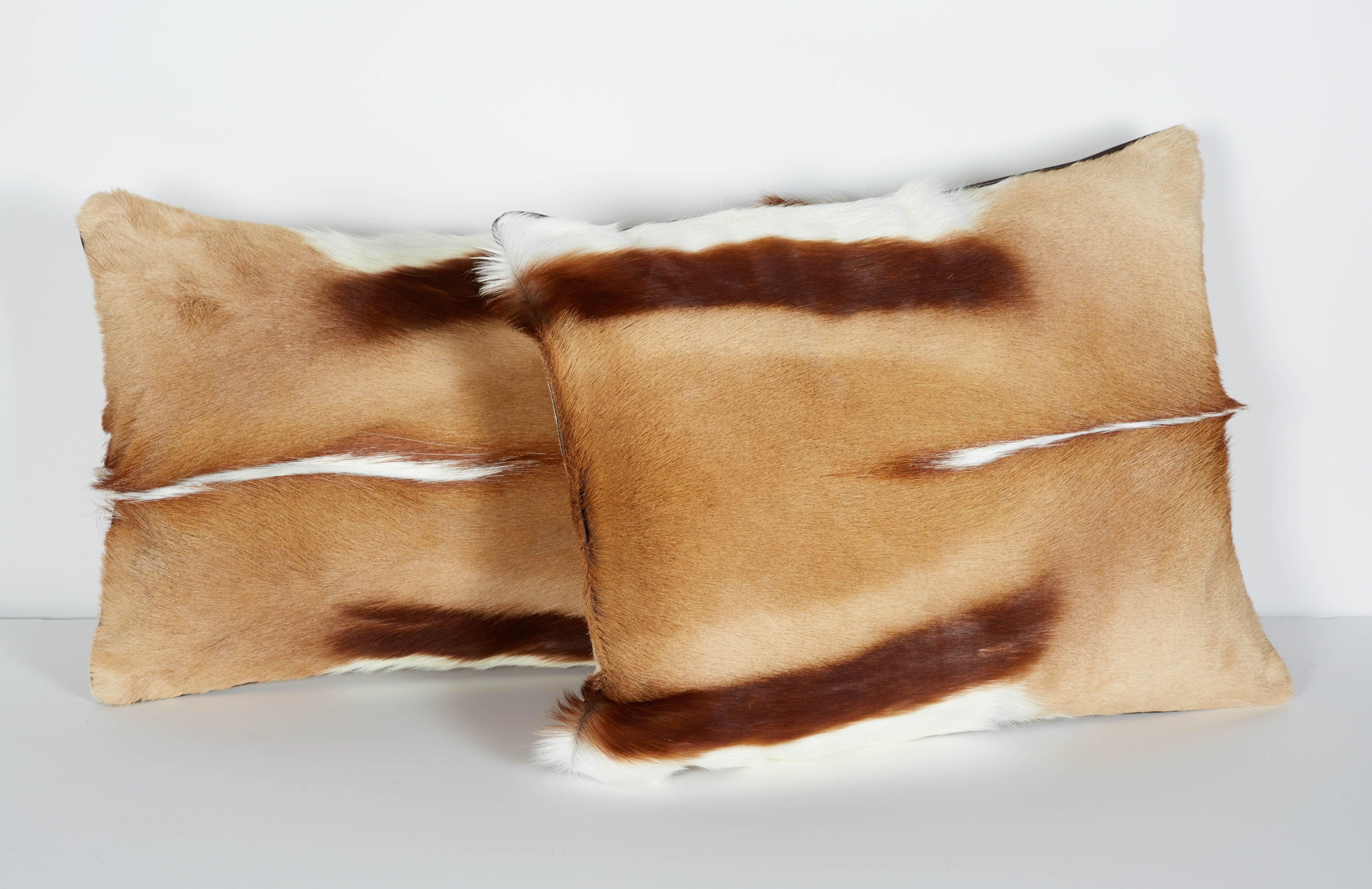 Exotic African Springbok Luxury Throw Pillows
