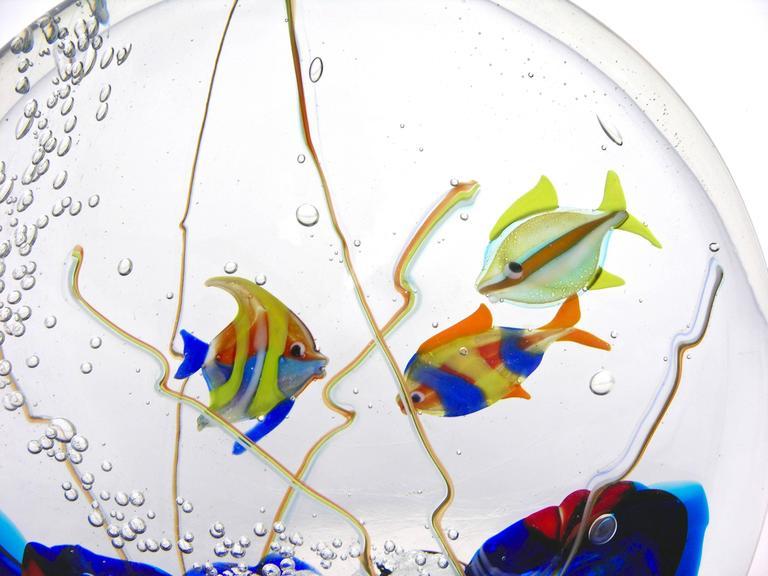 Late 20th Century Alberto Dona 1980 Blue Red Yellow Green Murano Glass Aquarium Round Sculpture For Sale