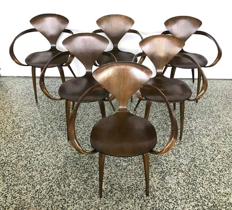 Six Walnut and Birch Vintage Cherner Armchairs for Plycraft 7