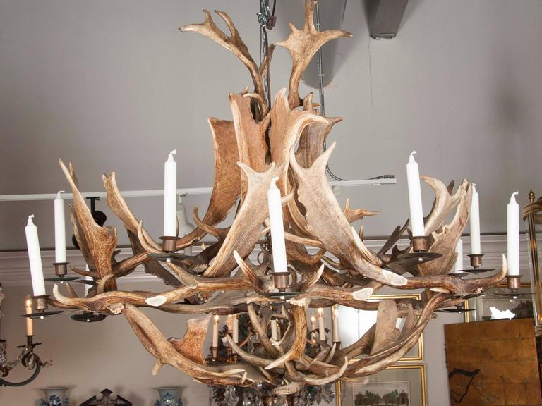 European Fallow Deer Antler Chandelier By Stan Hughes For Guinevere In Excellent Condition