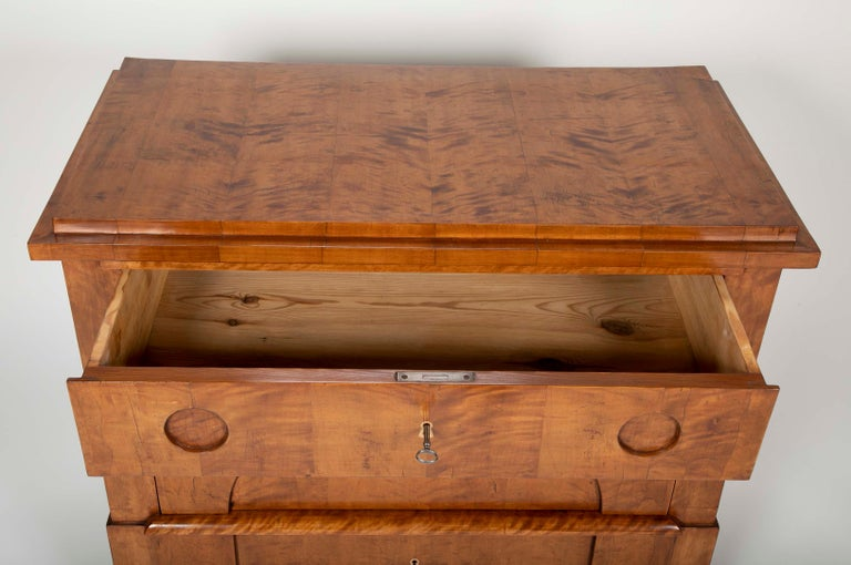 Period Biedermeier Birch Chest with Modern Appeal For Sale 2