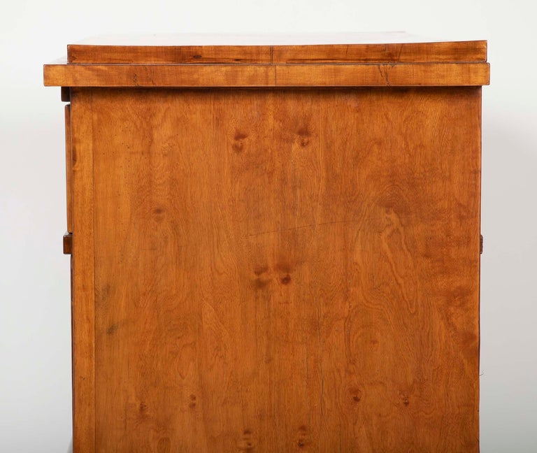 Period Biedermeier Birch Chest with Modern Appeal For Sale 8