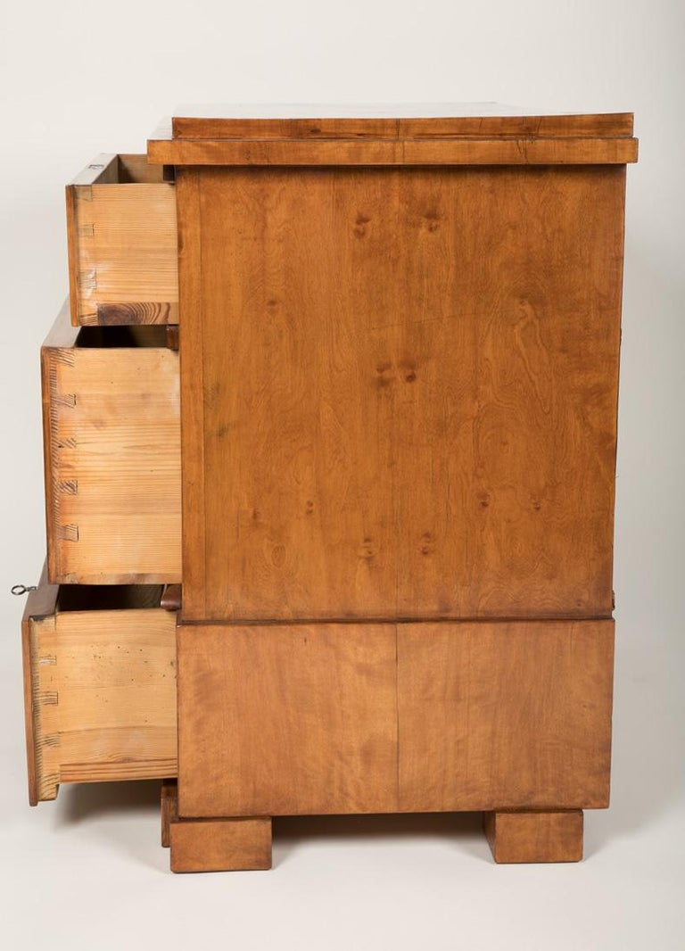 Period Biedermeier Birch Chest with Modern Appeal For Sale 11