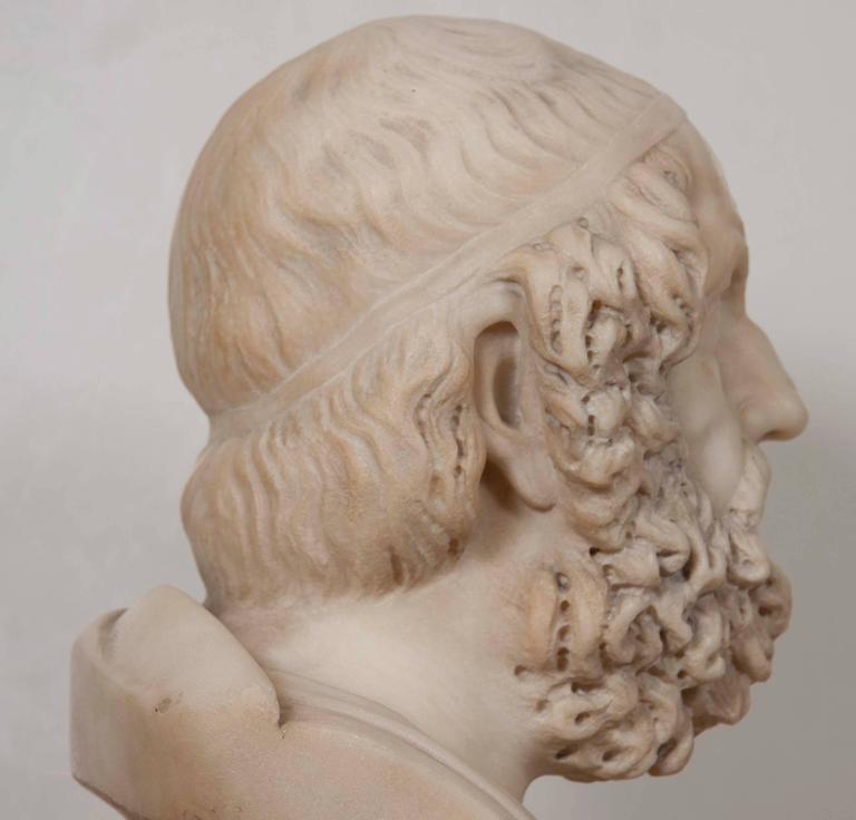 Solid Marble Bust of Homer For Sale 3