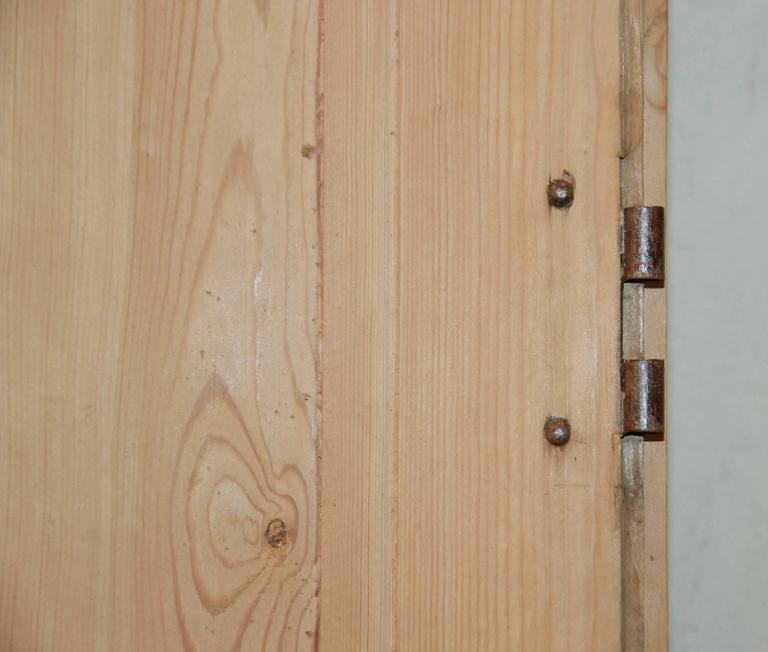 Pair of 19th Century French Pine Doors For Sale 2