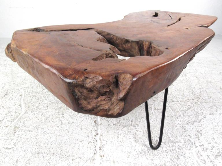 American Rustic Modern Free Edge Tree Slab Coffee Table on Hairpin Legs For Sale
