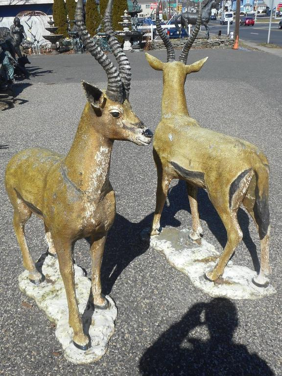 This stunning pair of bronze deer statues feature long curved horns, wide doe eyes, and hooves. The realistic features show quality with impressive detail throughout. Articulate colorful design and patinated finish offers beauty in any setting.