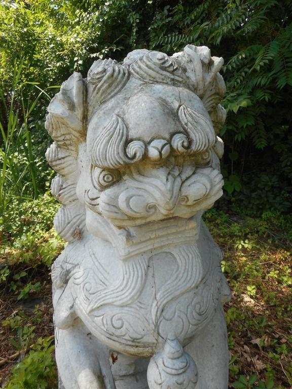 Impressive Pair Of Marble Chinese Foo Dog Statues For Sale