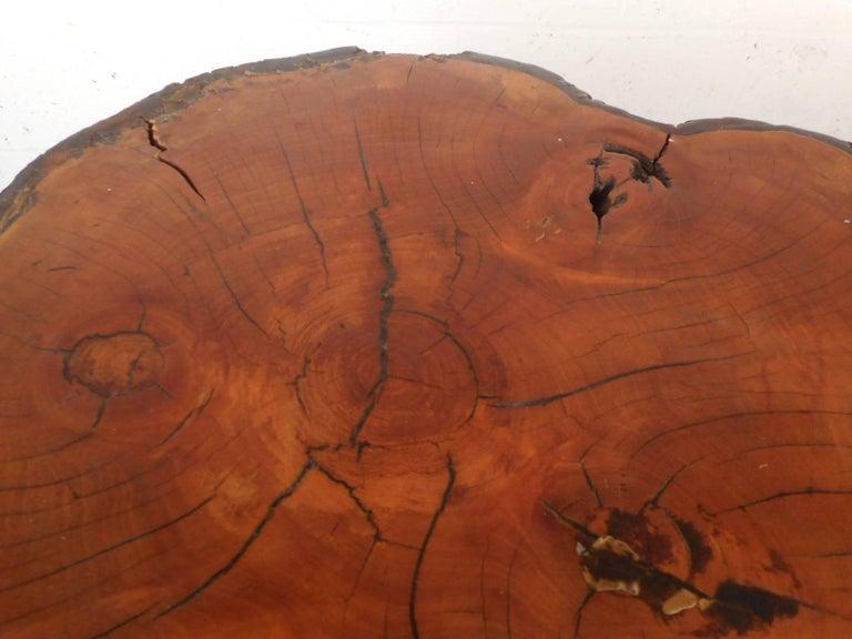 Mid-Century Modern Tree Slab End Table For Sale 3
