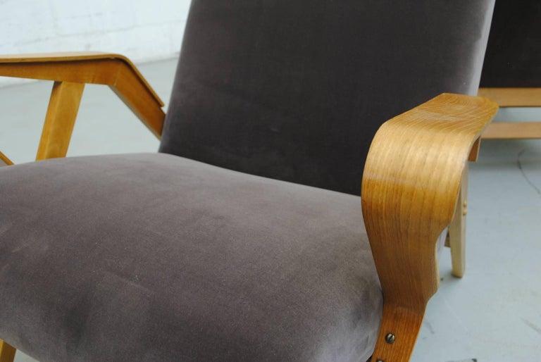 Pair of Czech Tatra Bent Plywood Lounge Chairs in Weimaraner Velvet 6