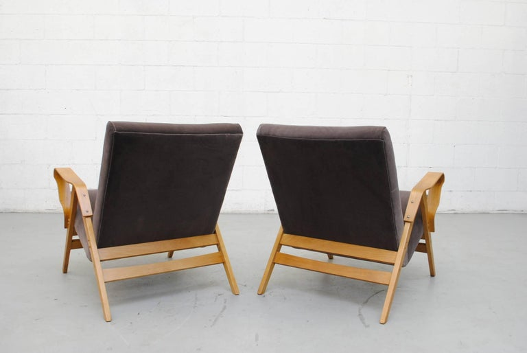 Pair of Czech Tatra Bent Plywood Lounge Chairs in Weimaraner Velvet 4