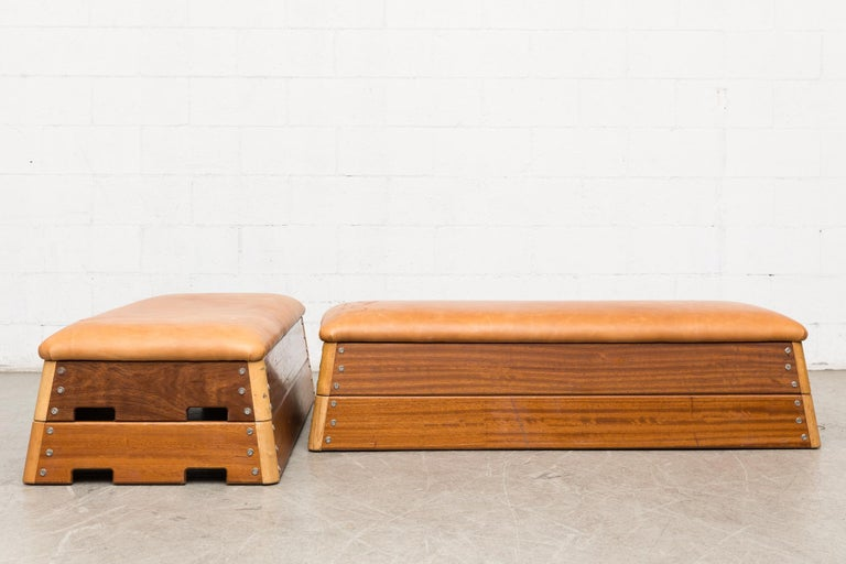 Mid-Century Modern Vintage Dutch Gymnastics Bench For Sale