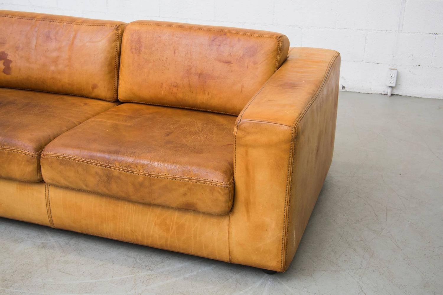 Natural Leather Two Cushion Sofa by Durlet at 1stdibs : C8A5359z from www.1stdibs.com size 1500 x 1000 jpeg 124kB