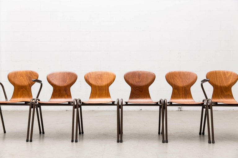 Fritz Hansen Style Stacking Teak Toned School Chairs 9