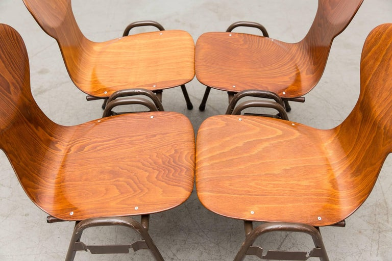 Fritz Hansen Style Stacking Teak Toned School Chairs 10