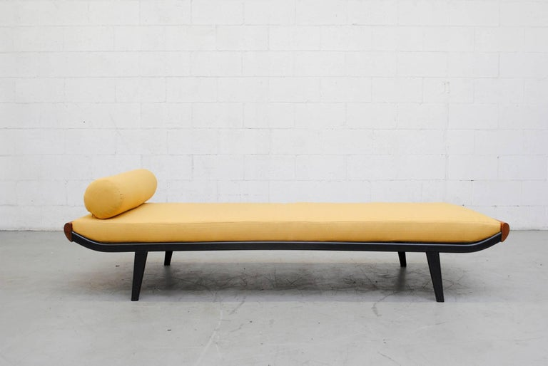 1960s Cleopatra daybed by A.R. Cordemeyer. Wood ends with enameled dark grey metal frame and Auping printed on mesh springs. New yellow upholstered mattress and matching bolster. Frame in original condition with visible scratching to the enameled