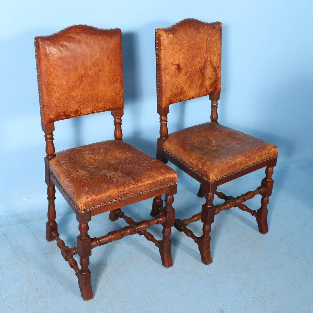 Set Of Ten Oak Dining Chairs With Leather Seats And Back