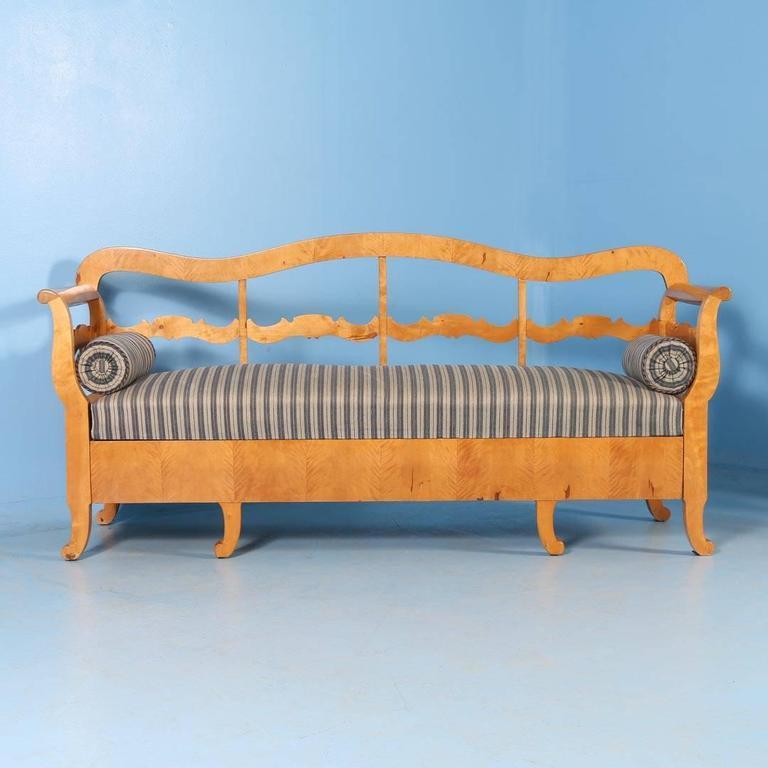 19th Century Antique Karl Johan Yellow Birch Bench Sofa From Sweden, circa 1840-1860 For Sale