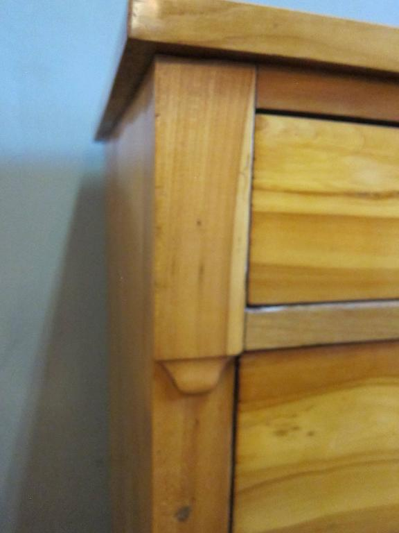 Mid-19th Century Biedermeier Chest of Drawers For Sale