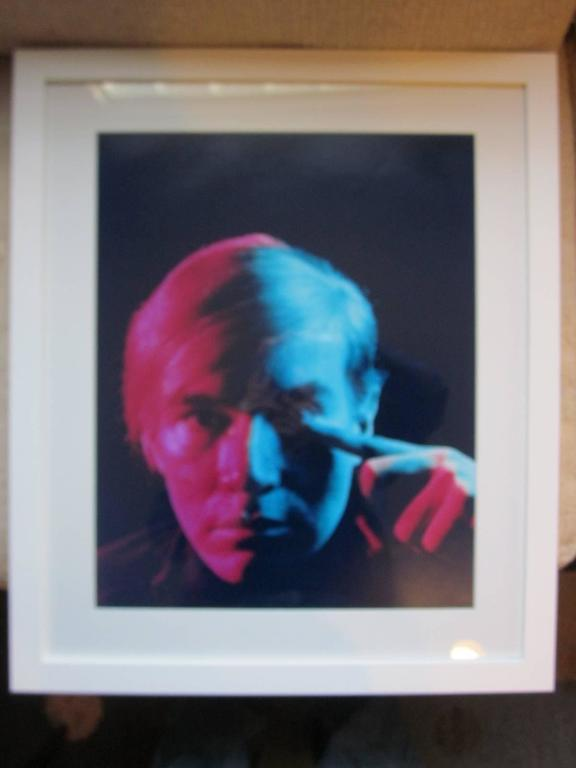 Andy Warhol 1968 Portrait by Philippe Halsman In Excellent Condition For Sale In Cincinnati, OH