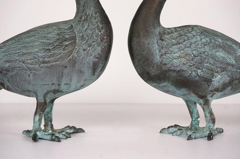 Pair Of Cast-Brass Figural Peacocks With Verdi Finish
