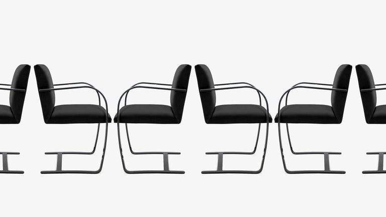 American Brno Flat-Bar Chairs in Noir Velvet, Obsidian Gloss Frame, Set of Ten For Sale