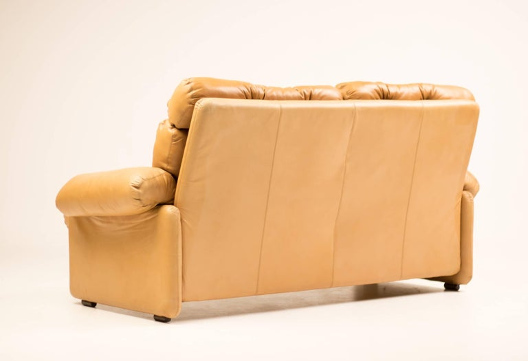 Coronado Leather Loveseat by Tobia Scarpa for B&B Italia For Sale 1