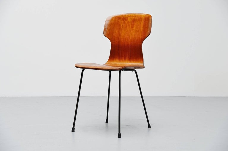 Cold-Painted Carlo Ratti Side Chair in Plywood by Legni Curva, Italy, 1950 For Sale