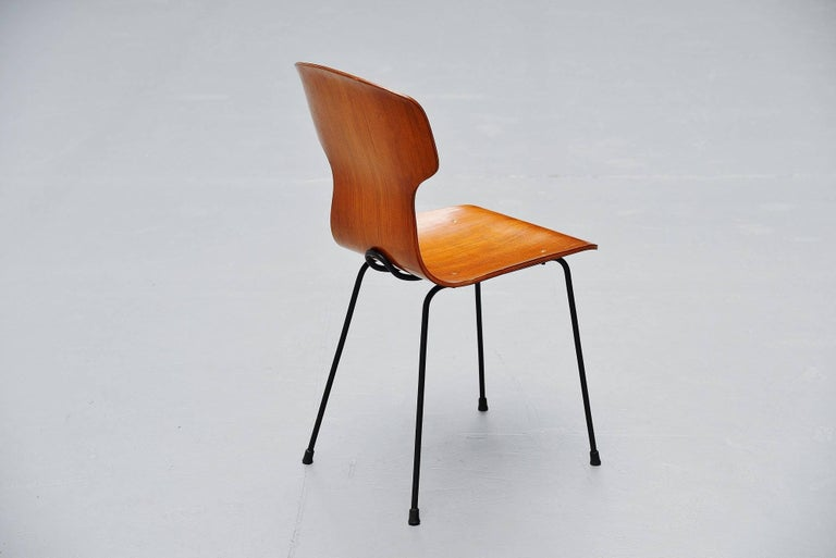 Italian plywood side chair designed by Carlo Ratti and manufactured by Legni Curva, Italy, 1950. The chair has a very nice curved shape and the plywood shell is supported by a black frame which is a very nice detail on this chair. Very nice and