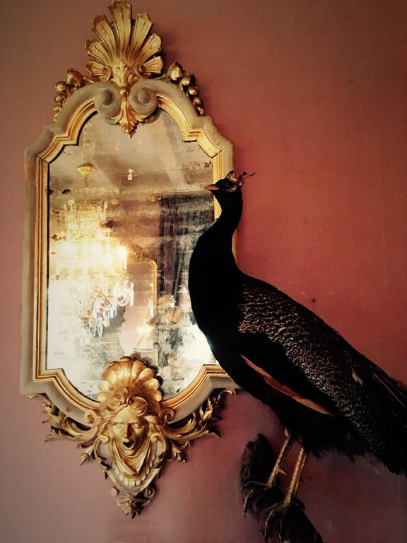 Three Unique Neo Baroque Mirrors With Richly Carved