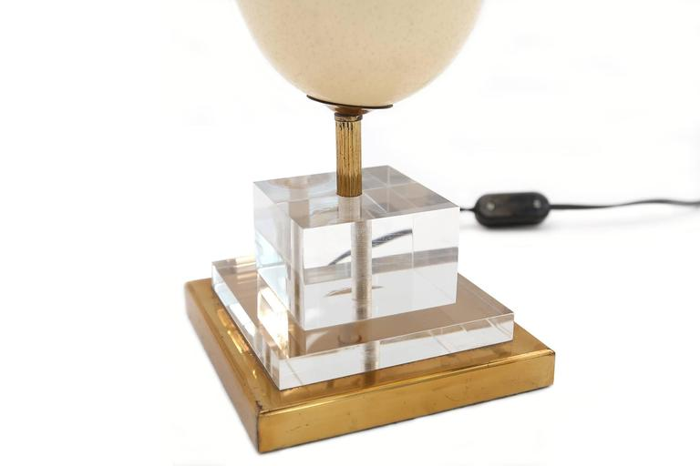Brass Lucite And Ostrich Egg Table Lamp At 1stdibs