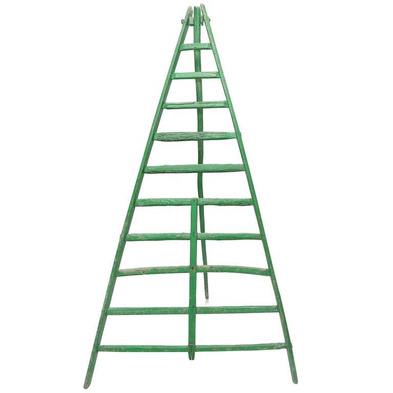 19th Century Fruit Picking Ladder