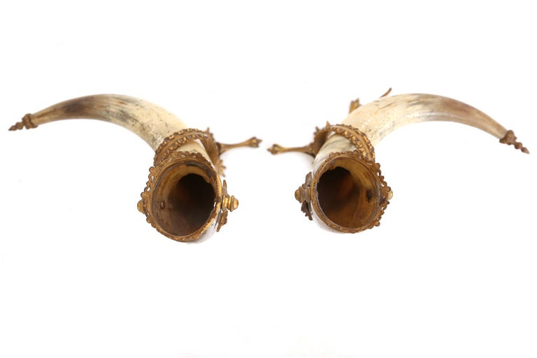 decorative antique pair of Mounted Horns In Excellent Condition For Sale In Antwerp, BE