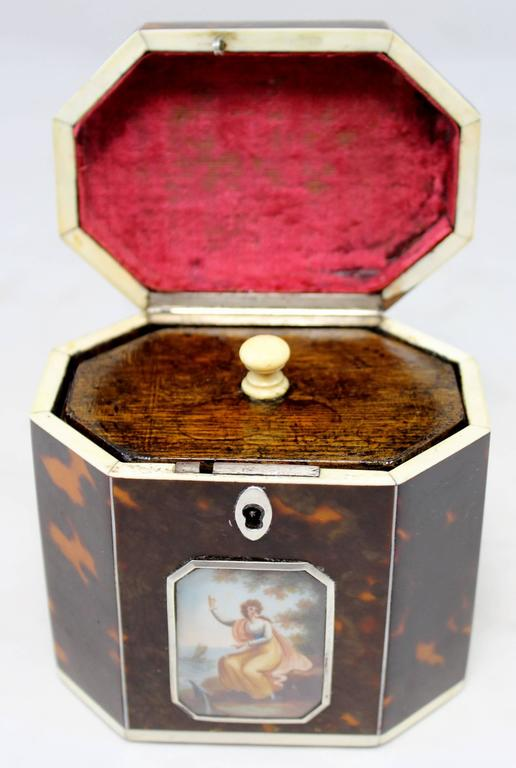 Tortoise Shell Exceptional Late 18th Century English Tea Caddy in Tortoiseshell For Sale