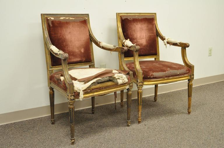 Pair of Gold Giltwood 19th Century French Louis XVI Style Dining Armchairs For Sale 5