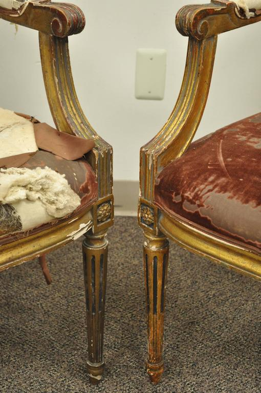 Wood Pair of Gold Giltwood 19th Century French Louis XVI Style Dining Armchairs For Sale