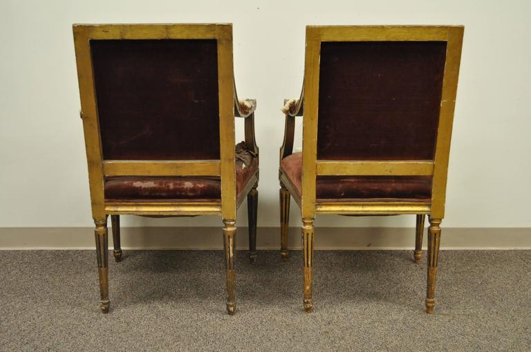 Pair of Gold Giltwood 19th Century French Louis XVI Style Dining Armchairs For Sale 4