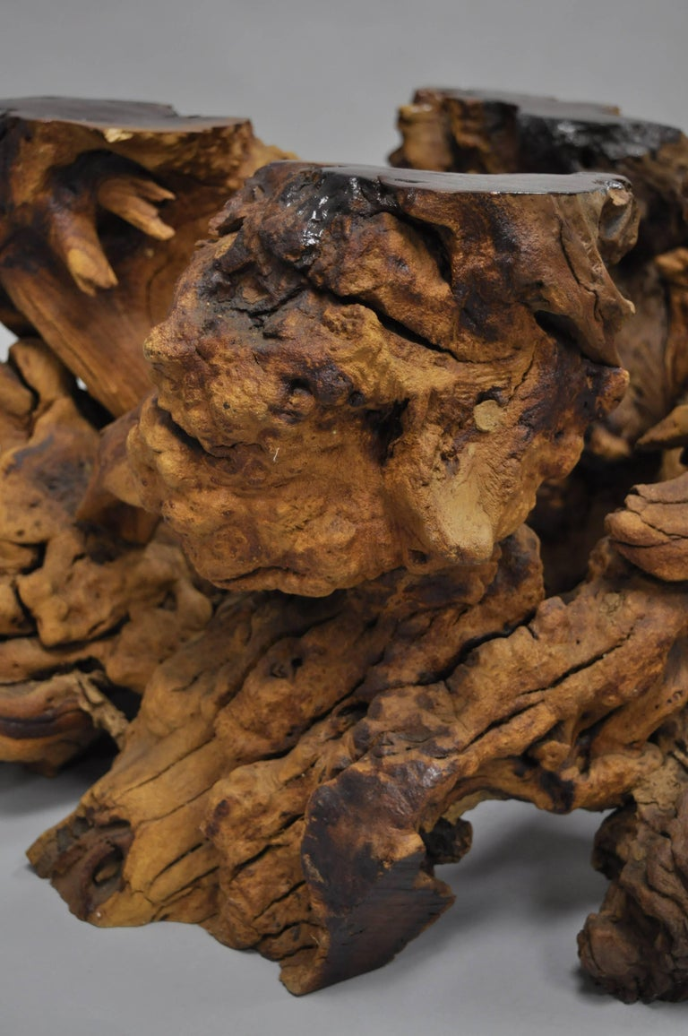 Burl Wood Free Form Driftwood Tree Branch Wood Coffee Table Base Naturalist In Good Condition For Sale In Philadelphia, PA