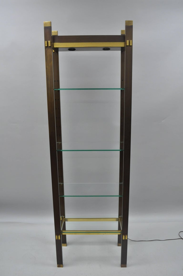 Bronze Brass and Glass Illuminating Modern Étagère Curio Shelf by ...