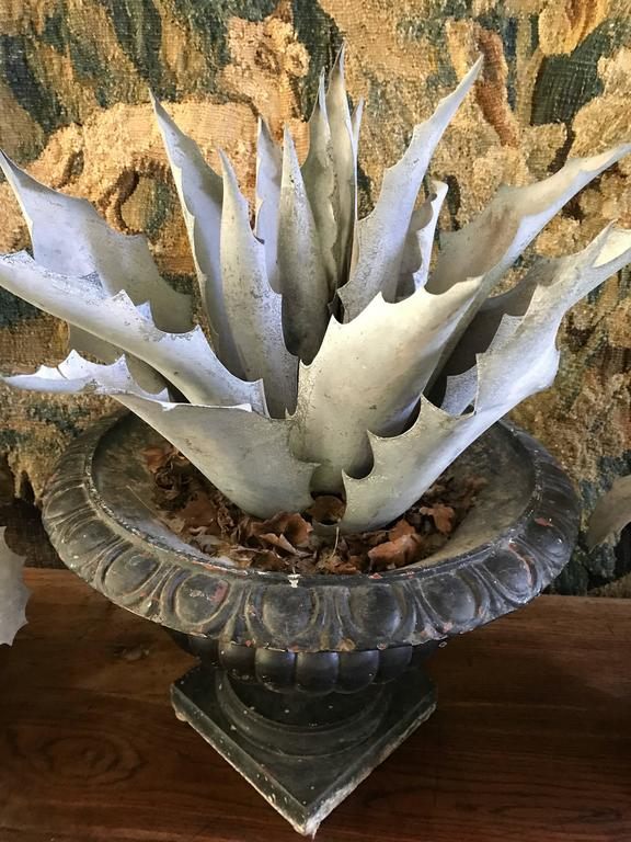 Three Late 1800s Antique French Zinc Aloes 9