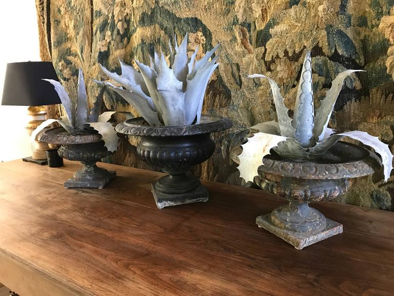 Three Late 1800s Antique French Zinc Aloes 8