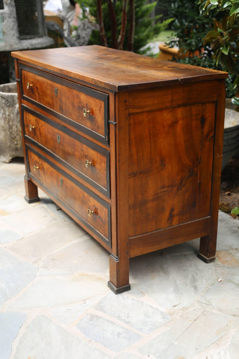 Biedermeier Walnut Chest with Ebonized Inlay 4