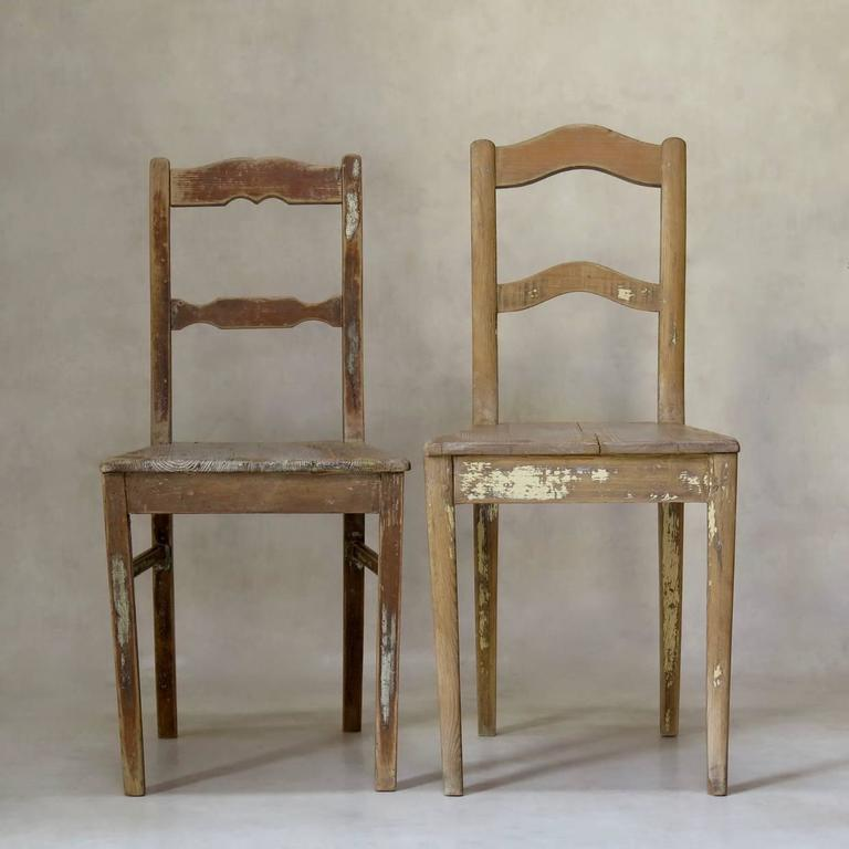 Charming near-pair of rustic pine chairs, retaining traces of paint here and there. Large trapezoidal seats. Raised on sabre legs.