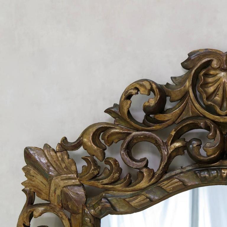 Large and elaborately carved baroque mirror, with acanthus leaf and shell detail.