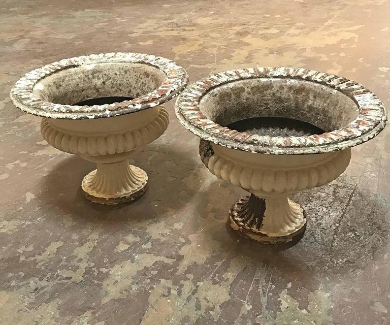 antique white cast iron pots at 1stdibs. Black Bedroom Furniture Sets. Home Design Ideas
