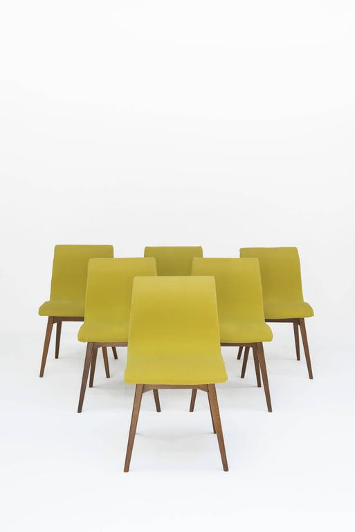 Set of Six Chairs C59 by René Jean Caillette, Charron Edition, 1960 2