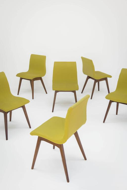 Set of Six Chairs C59 by René Jean Caillette, Charron Edition, 1960 5