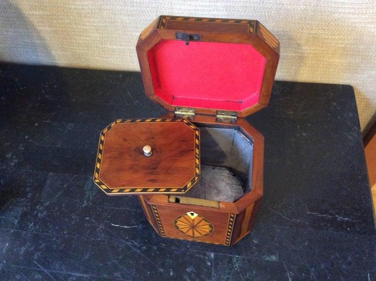Satinwood Single Georgian Style Tea Caddy For Sale