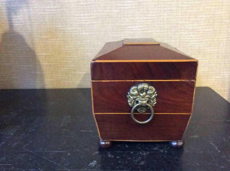 19th century tea caddy with brass handles.