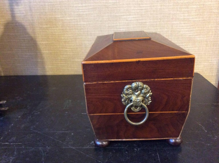 19th Century Tea Caddy with Brass Handles In Good Condition For Sale In Highland Park, IL